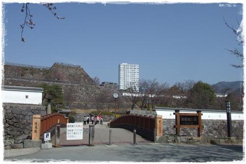 2010320-0.jpg