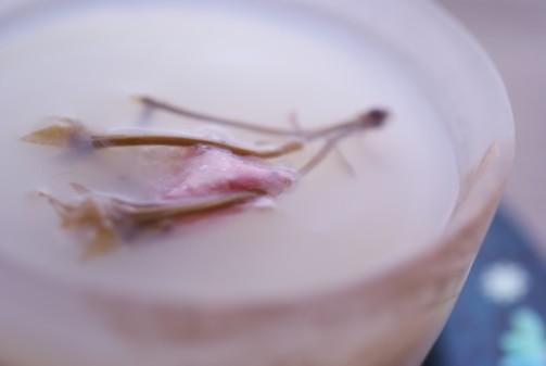 bアップ桜抹茶ムース