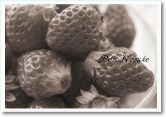 b白黒苺タルト