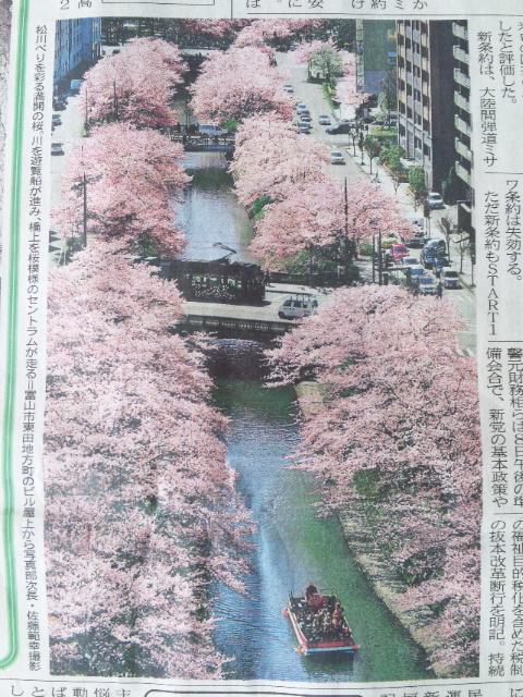 松川べりの桜並木に、セントラム