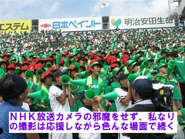 甲子園応援 (5)