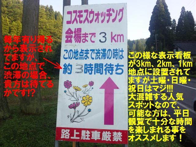 010 となみ夢の平 コスモスウォッチング (3)