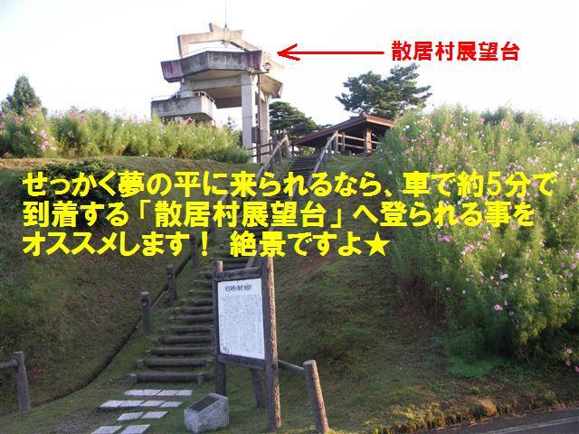 010 となみ夢の平 コスモスウォッチング (10)