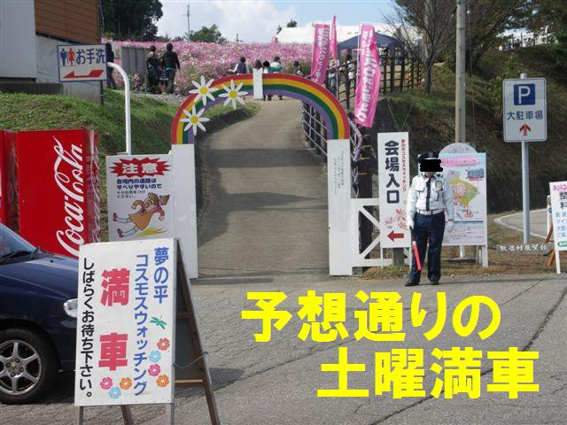 2010 となみ夢の平コスモスウォッチング (1)