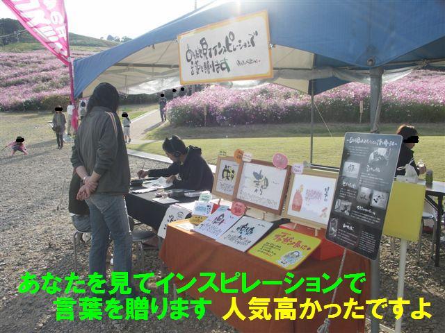 2010 となみ夢の平コスモスウォッチング (11-2)