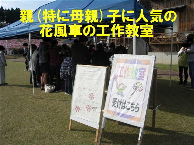 2010 となみ夢の平コスモスウォッチング (12)