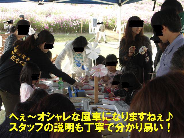 2010 となみ夢の平コスモスウォッチング (13)