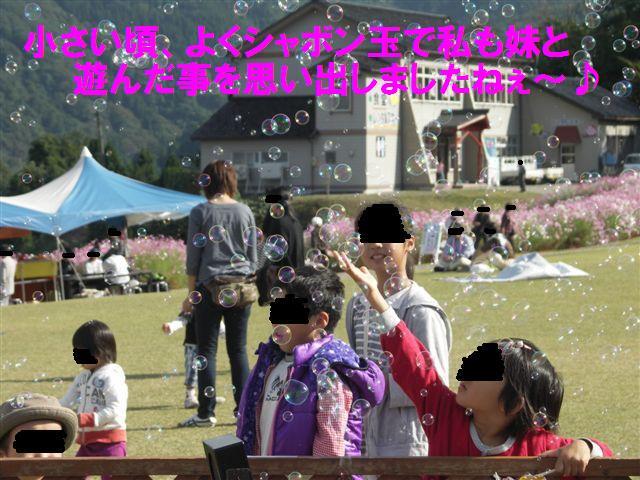 2010 となみ夢の平コスモスウォッチング (16)