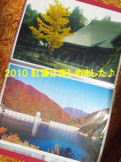 2010秋 (1)