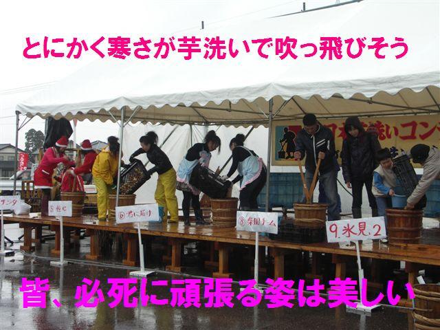全日本芋洗いコンテスト (3)