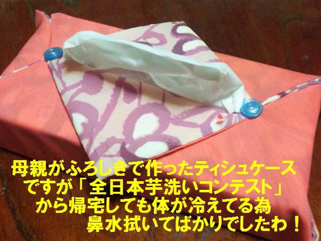 全日本芋洗いコンテスト (14)
