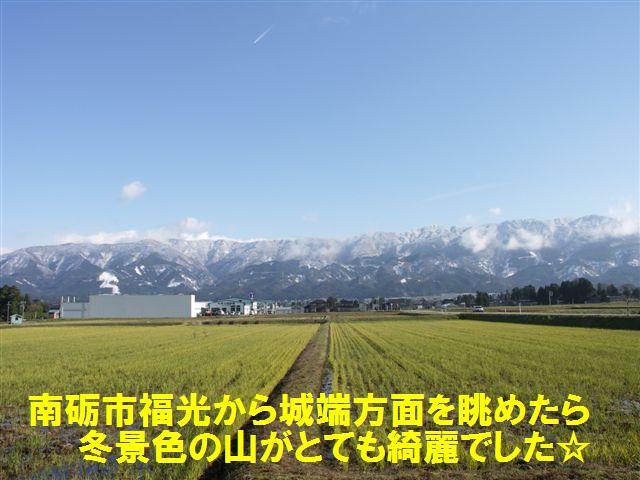 冬到来 (1)