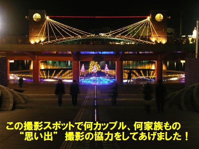 環水公園スイートイルミネーション2010 (5)
