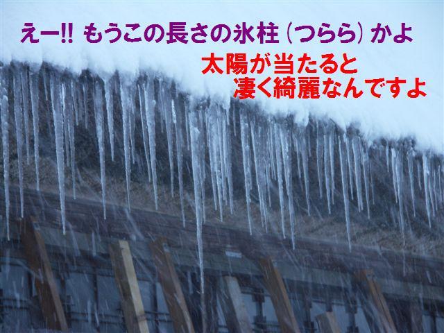 相倉合掌集落 (5)