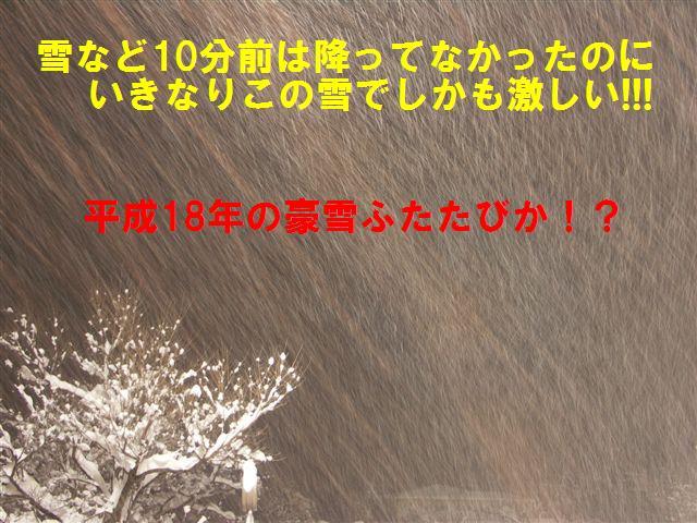 閑乗寺スキー場 (4)