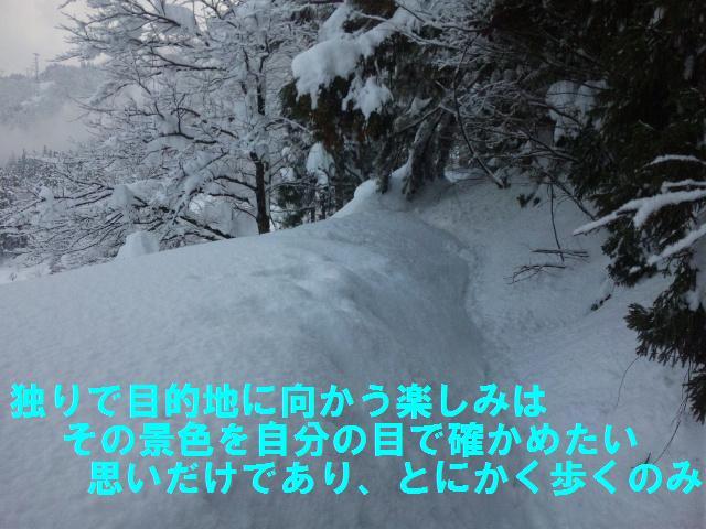 相倉合掌集落 (2)