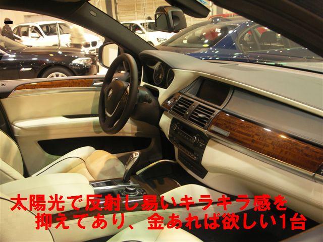 輸入車ショウ (5)