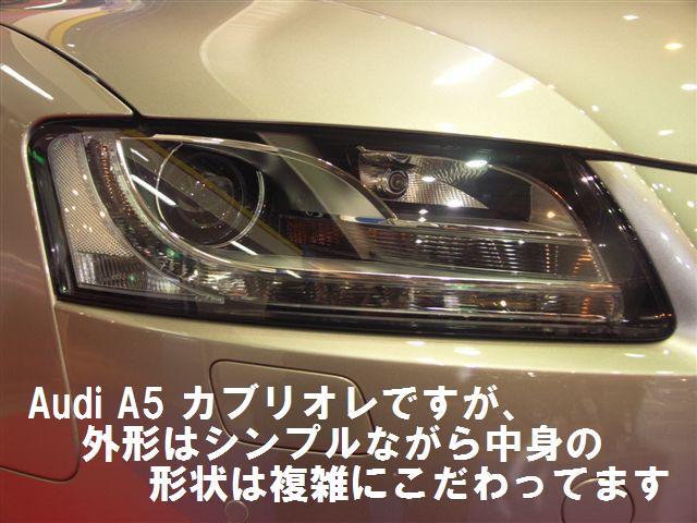 輸入車ショウ (11)