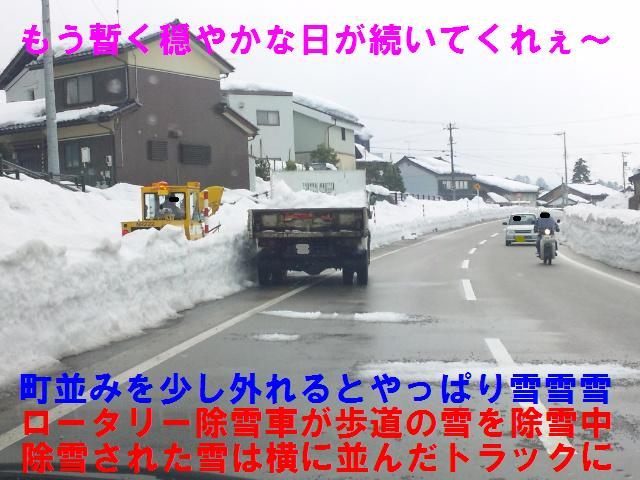 井波町 (5)