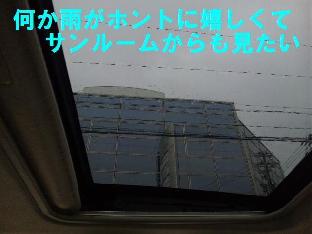雨が嬉しい (2)