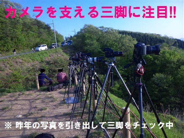 三脚選び (1)