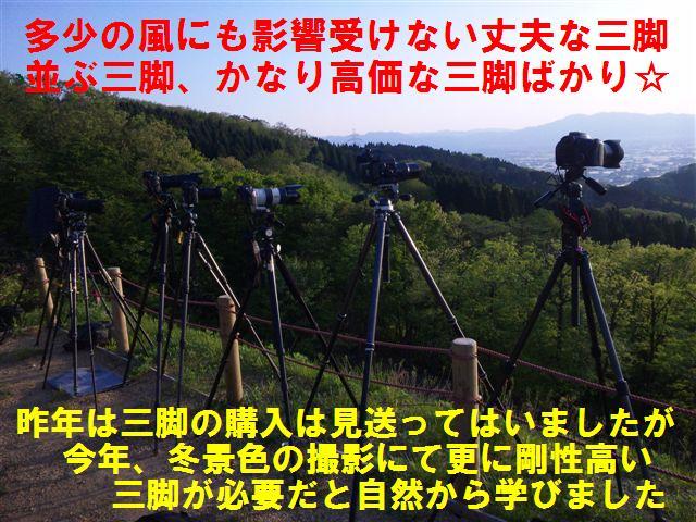 三脚選び (2)