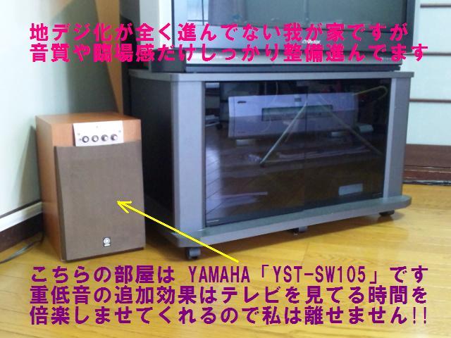 YST-SW105