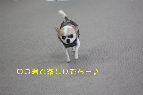 IMG_1561.jpg