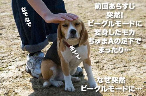 100302_01.jpg