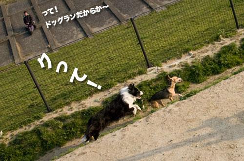 100327_08.jpg