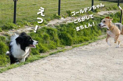 100327_09.jpg