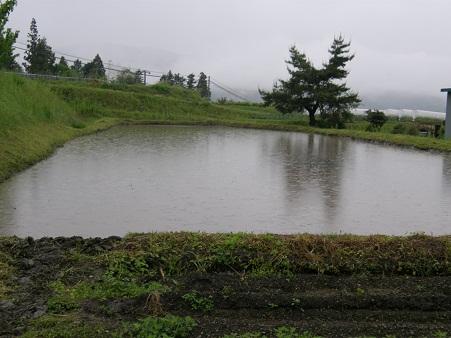 20110528b.jpg
