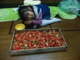 2010イチゴ