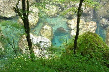 天川 洞川