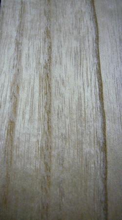 桐の木 アメリカ産材
