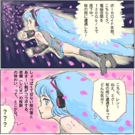 ミクさん桜の雨に遭遇