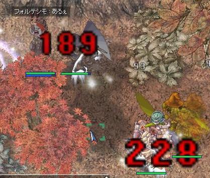 12m6d 01
