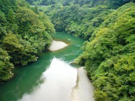 深い緑と渓流