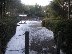 kaisei-oji1.jpg