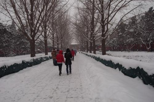雪の擁和宮入口100103