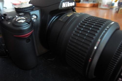 NikonD3000100116