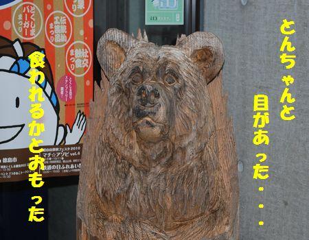 DSC_0019_20101202064430.jpg
