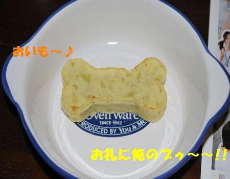 DSC_0035_20091111204744.jpg