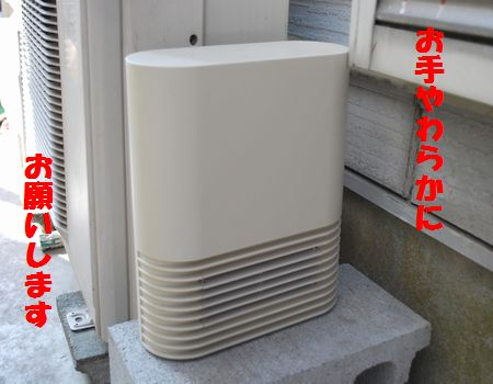 DSC_0042_20120307081740.jpg