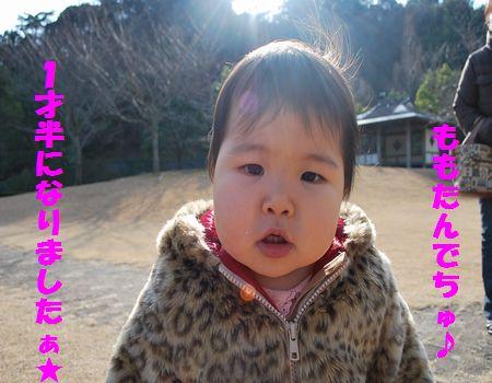 DSC_0053_20100131202747.jpg