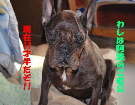 DSC_0088_20100131205018.jpg