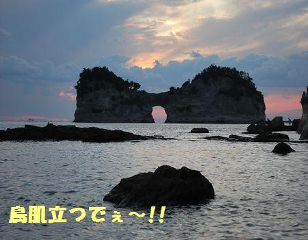 DSC_0099.jpg