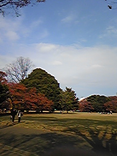 20091129120729