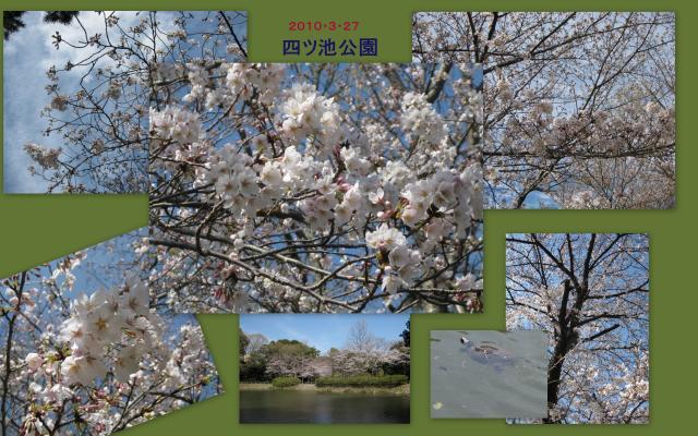 繧ウ繝ゥ繝シ繧ク繝・4_convert_20100328161652
