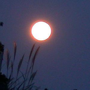 moon0022.jpg